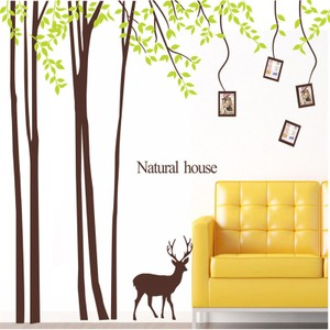 Large Tree With Green Leaves Photo Frame Wall Decal